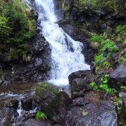 Cascada-Patrahpaitesti